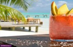summer cocktails images - Google Search Cocktail Images, Summer Cocktails, Cantaloupe, Watermelon, Fruit, Google Search, Food, The Fruit, Meals