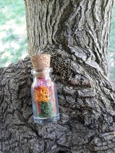 Moss necklace mini terrarium necklace gift for women by vospik