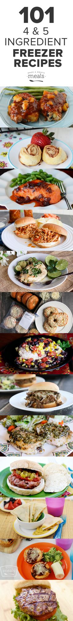 101 four and five ingredient easy and quick recipes! The best part, is they are ALL freezer-friendly!