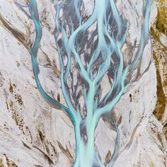 New Zealands braided rivers are incredibly beautiful they take on a whole new look when viewed from the air though! The shape of this one reminded me of a tree
