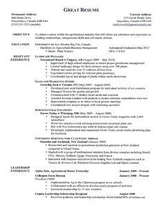 Example Of A Good Resume Format Security Guard Resume Sample  Sample Resume And Career Advice