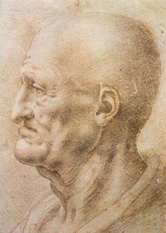 Estudio de anciano. Leonardo da Vinci