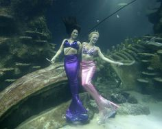 Weeki Wachee, Fla., more mermaids than people!