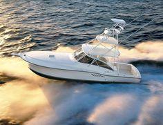 sport-fishing boat : flybridge open express-cruiser (T,Top) 410