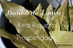 Dicas da Bruxa: BANHO DE LOURO - RIQUEZA E PROSPERIDADE