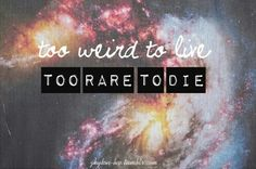 Fear and loathing words to love