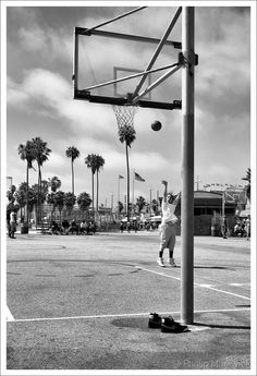 Venice Basket Ball