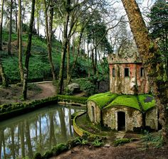 Beautiful decadence - Imgur  // It is part of the gardens of the Palácio Nacional da Pena at Sintra, Portugal