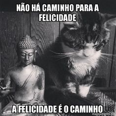 """""""Many do not know that we are here in this world to live in harmony. Those who know this do not fight against each other."""" ~ The Buddha, The Dhammapada lis Mundo Animal, My Animal, Crazy Cat Lady, Crazy Cats, I Love Cats, Cool Cats, Neko, Chat Maine Coon, Cat Statue"""