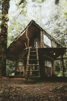 Tree House Inspired House In The Woods Into The Woods, Cabins In The Woods, House In The Woods, Forest Cabin, Forest House, Eco Construction, Haus Am See, Woodland House, Rustic Exterior