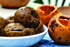 By Christie Keulder Maguni (monkey orange) ice-cream recipe Maguni has the flavour of a very complex, tropical fruit salad and is the ideal local fruit for […]