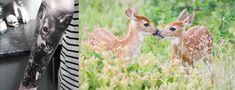 [Animal Facts + Tatts] Deer – staciemayer.com