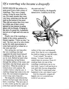 The dragonfly story! read it!
