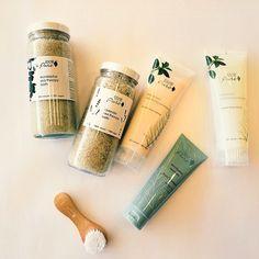 Best Shampoo to Boost Volume 100% Pure Kelp & Mint Volumizing Shampoo