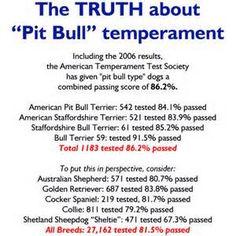 Image detail for -Pit Bull Prayer