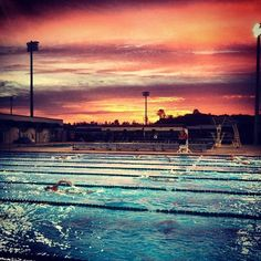 Florida Gulf Coast University swimming, that must be so cool to swim and then look up at the beautiful sky