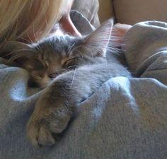 Sleepy Hug