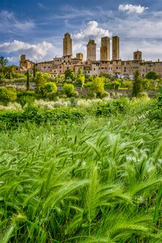 San Gimignano in Toscana, Italy Travel Europe Cheap, Italy Travel, Italy Vacation, Siena Toscana, Places To Travel, Places To See, Tuscany Landscape, Living In Italy, Visit Italy
