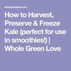 How to Harvest, Preserve & Freeze Kale (perfect for use in smoothies!) | Whole Green Love