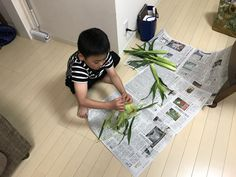 静岡市葵区北安東で、 美と健康を楽しむ 若かえり専門の美容室 髪森の石井です。   世の中には知らない事がいっぱい。  今日は、色々教わりました。   お客さんから  「ヤングコーン🌽とドライフラ... 詳しくは http://kamimori917.com/72683/?p=5&fwType=pin