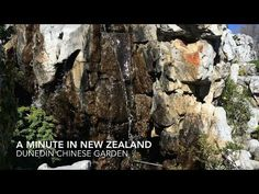 My Word with Douglas E. Welch » A Minute in New Zealand – Dunedin Chinese Garden [Video] (1 min)