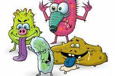 Πιο μολυσμένοι οι καναπέδες από τις τουαλέτες ~ Χωρίς Αναισθητικό