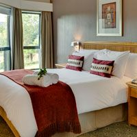 Experience luxury accommodations throughout the stunning continent of Africa at Protea Hotels, a Marriott International hotel brand. Hotel Branding, Luxury Accommodation, Bedroom, Beds, Furniture, City, Home Decor, Decoration Home, Room Decor