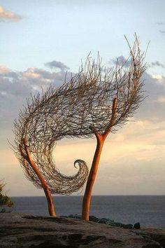#balance #strength