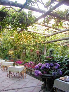 Garden Dinner in Sorrento, Italy