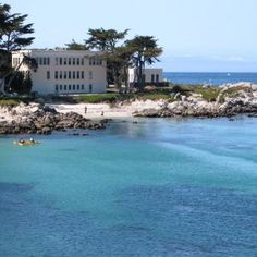 Best Marine Biology Colleges In the USA.  Maybe someday...