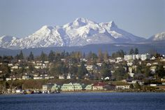 Campbell River, BC - people come from around the world to experience this area and I LIVE HERE!