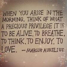 When you arise in the morning, think of what a precious privilege it is to be alive, to breath, to think, to enjoy, to love. Marcus Aurelius
