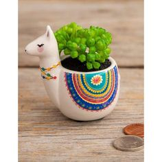 The Llama Critter Faux Succulent features a hand painted llama shaped planter with a faux succulent. This adorable llama succulent will look great in your home or at work! Bring some plant life in without the hassle of a real plant. Product DetailsFeatures hand painted details Each critter pot includes a faux succulent plant2in H x 2.5in diameterCeramic, PVC We ship within one business day of purchase. Orders placed over the weekend or holidays will be shipped within 1-2 business days. (If you Hanging Succulents, Faux Succulents, Alpacas, Clay Projects, Clay Crafts, Cute Clay, Clay Pots, Clay Pinch Pots, Ceramic Pots