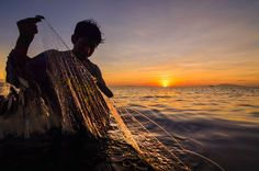 Daily Dozen for March 8, 2016 — Photos -- National Geographic Your Shot