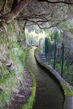 levada des 25 sources, île de Madère, Paul da Serra, Madeira Islands_ Portugal
