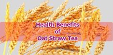 Oat Straw Tea is made from oat straw, which is a part of the left after the Seed of Oat Plant is harvested on the ground. In ancient times, oatmeal was used to make things, but the benefits discovered over time made it an admirable tea.