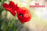Canadian Veterans - Remembrance Day