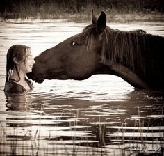 A horse doesn't care how much you know, until he knows how much you care.