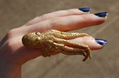 Octopus Ring by Antonio Palladino