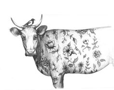 The Bird and the tattooed Cow