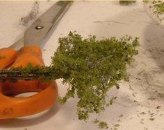Making Bushes using
