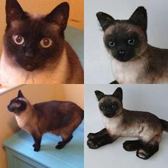 custom siamese stuffed animal plush