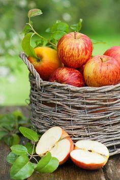 beneficios da maçã carol magalhaes