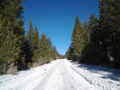 Off-roading on 3N16 (Holcomb Valley rd) near Fawnskin, CA