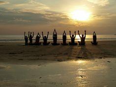 Yoga Teacher Tips and Courses!