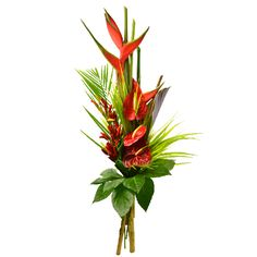 Pili est un majestueux bouquet exotique tout en hauteur, composé de Balisiers, d'Anthuriums rouges et de piments, dont les fleurs sont fraîchement importées de notre plantation à la Martinique. Fleurs Lointaines.