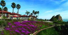 Best Western Shelter Cove Pismo Beach the memories we made there Pismo Beach Hotels, Pismo Beach Pier, Pismo Beach California, California Wedding, San Luis Obispo Hotels, San Luis Obispo County, Best Vacations, Vacation Destinations, Secluded Beach