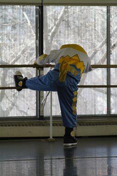 Rocky from Denver Nuggets visits Colorado Ballet!!