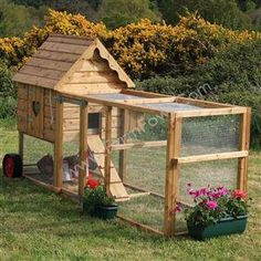 The Molly Chicken Coop! My dads gonna make us something like this for our futur… The Molly Chicken Coop! My dads gonna make us something like this for our future chickens that we will get pretty soon! Small Chicken Coops, Chicken Coop Designs, Backyard Chicken Coops, Chicken Coop Plans, Building A Chicken Coop, Diy Chicken Coop, Chickens Backyard, Backyard Ideas, Chicken Feeders