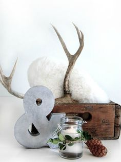 The Design Chaser: Interior Styling   Antlers